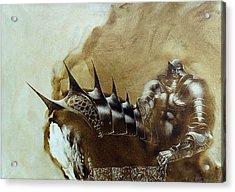 Knight 1 Acrylic Print by Valeriy Mavlo