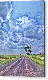 Knowing The Right Way Acrylic Print