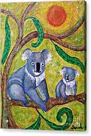 Koala Sunrise Acrylic Print