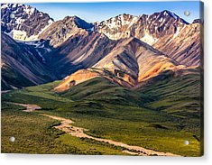 Acrylic Print featuring the photograph Kodachrome Pass Denali Closeup by Claudia Abbott