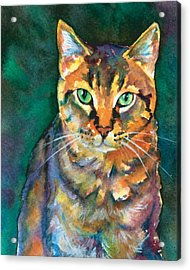 Acrylic Print featuring the painting Kodi by Christy Freeman