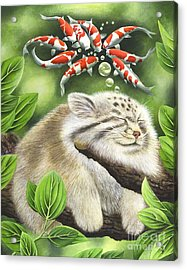 Koi Dreaming Acrylic Print