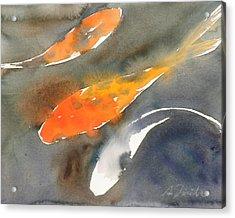 Koi Fish No.1 16x20 Acrylic Print by Sumiyo Toribe