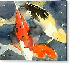 Koi Fish No.6 16x20 Acrylic Print by Sumiyo Toribe