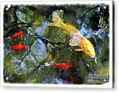 Koi Pond 2 Acrylic Print