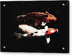 Koi Trio  Acrylic Print by Deborah  Crew-Johnson