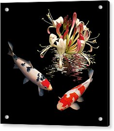 Koi With Honeysuckle Reflections Square Acrylic Print
