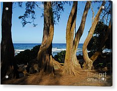 Koki Beach Acrylic Print
