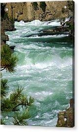Kootenai River Acrylic Print by Marty Koch