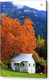 Kootenay Autumn Shed Acrylic Print