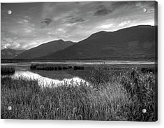 Kootenay Marshes In Black And White Acrylic Print