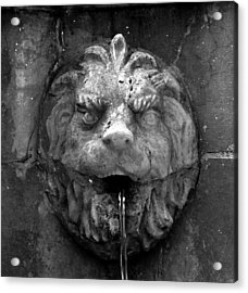 Koreshans Lion Acrylic Print by David Lee Thompson