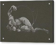 Kroki 2015 10 03_14b Figure Drawing White Chalk Acrylic Print
