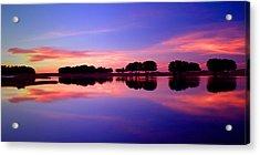 Ksar Ghilane Oasis At Sunset Acrylic Print by John McKinlay