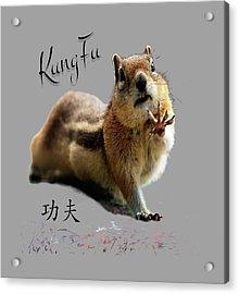 Kung Fu Chipmunk Acrylic Print