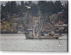 Acrylic Print featuring the photograph Kwiaahwah by Randy Hall