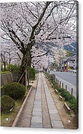 Kyoto In Bloom Acrylic Print