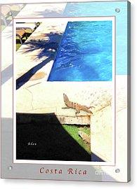 la Casita Playa Hermosa Puntarenas Costa Rica - Iguanas Poolside Greeting Card Poster Acrylic Print