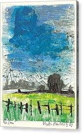La Crau Acrylic Print by Martin Stankewitz