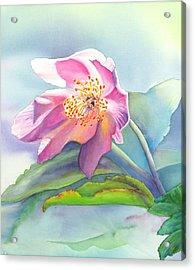 La Fleur Rose Acrylic Print
