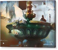 La Fuente De Ayamonte Acrylic Print by Alfonso Garcia