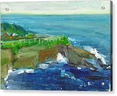 La Jolla Cove 024 Acrylic Print by Jeremy McKay