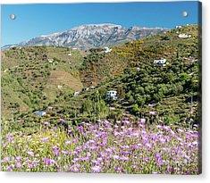 La Maroma In Spring Acrylic Print by Rod Jones