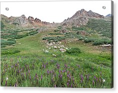 Acrylic Print featuring the photograph La Plata Peak by Cascade Colors