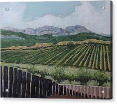 La Rioja Valley Acrylic Print