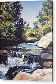 La Salle Falls Acrylic Print by Larry Seiler