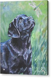 Labrador Retriever Pup And Dragonfly Acrylic Print