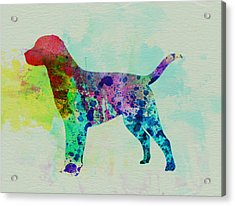 Labrador Retriever Watercolor Acrylic Print by Naxart Studio