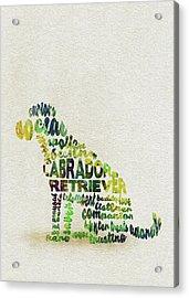Labrador Retriever Watercolor Painting / Typographic Art Acrylic Print