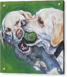Labrador Retriever Yellow Buddies Acrylic Print by Lee Ann Shepard