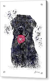 Whenever You Just Need A Good Hug, I'm Here Acrylic Print