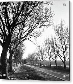 Lady Anne's Drive, Holkham Acrylic Print