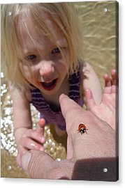 Acrylic Print featuring the photograph Lady Bug  by Dan Whittemore