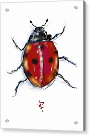 Lady Bug Acrylic Print by Russell Pierce