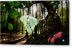 Lady Butterfly Acrylic Print