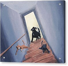Lady Chases The Cats Down The Stairs Acrylic Print