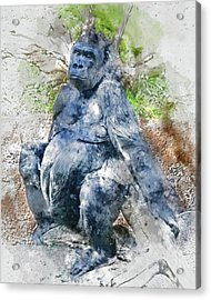 Lady Gorilla Sitting Deep In Thought Acrylic Print
