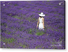 Lady In Lavender Field Acrylic Print