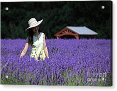 Lady In Lavender Acrylic Print