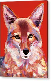 Lady In Red Acrylic Print by Bob Coonts