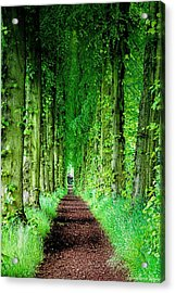 Lady Lucy's Walk Acrylic Print by Wallaroo Images