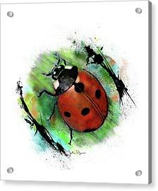 Ladybug Drawing Acrylic Print