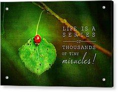 Ladybug On Leaf Thousand Miracles Quote Acrylic Print