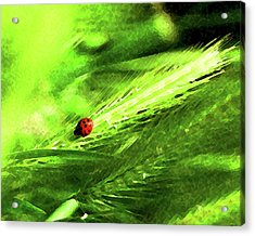 Acrylic Print featuring the digital art Ladybug by Timothy Bulone