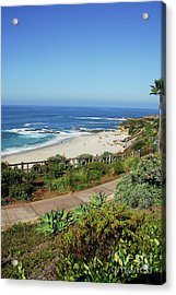 Laguna Afternoon Acrylic Print by Timothy OLeary