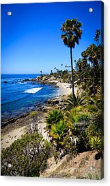 Laguna Beach California Beaches Acrylic Print by Paul Velgos
